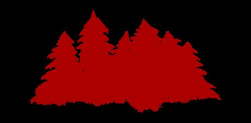 Cedro rojo de california